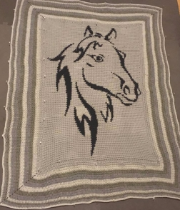 horse finished
